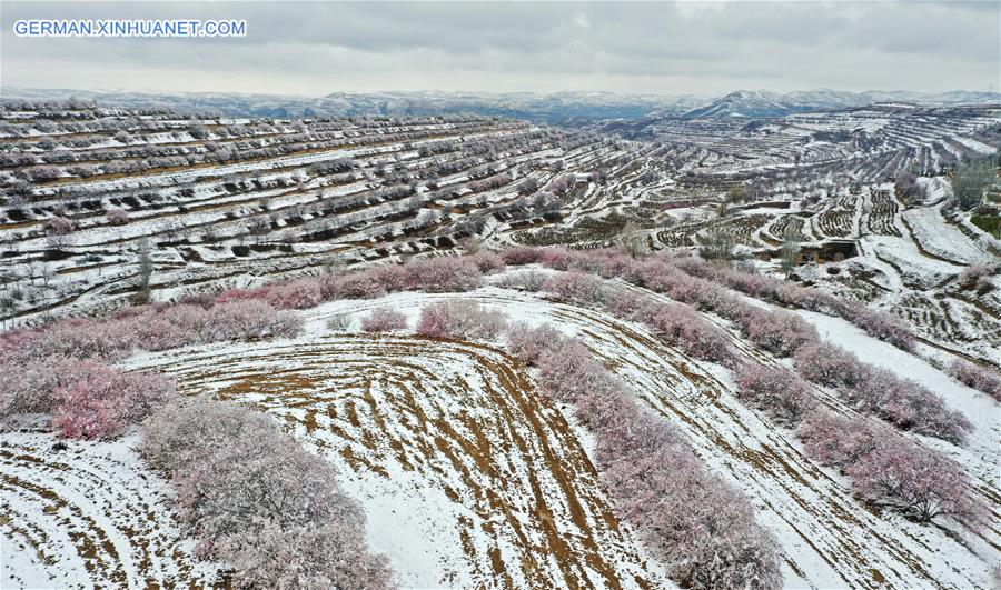 CHINA-NINGXIA-GUYUAN-SNOW SCENERY (CN)