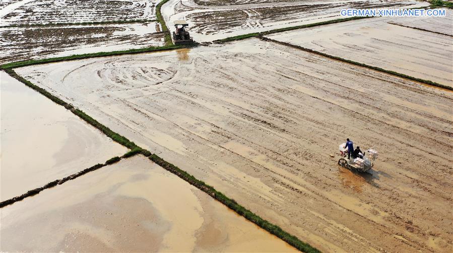 CHINA-JIANGXI-NANCHANG-SPRING-FARMING (CN)