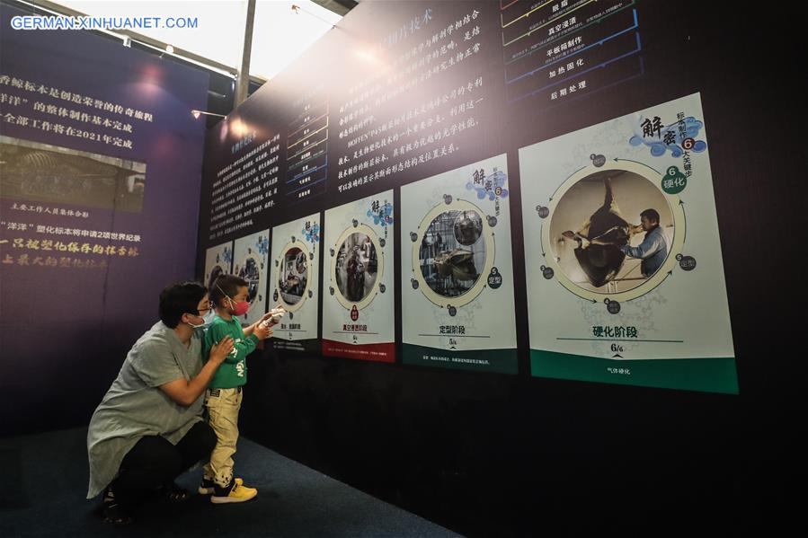 CHINA-LIAONING-DALIAN-SPERM WHALE-PLASTINATED SPECIMEN-EXHIBITION (CN)