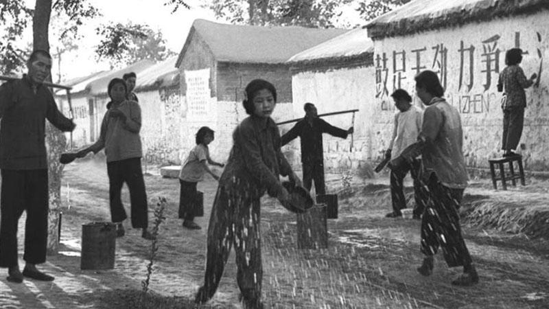 Album von China: Die Zeit der Ausrottung der vier Plagen
