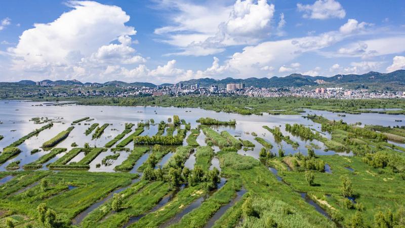 China veröffentlicht Weißbuch zu Maßnahmen gegen Klimawandel