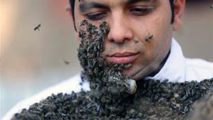 Bienenzüchter in Ägypten