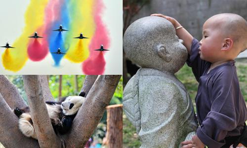 Xinhua-Fotos des Jahres 2016 (Teil 1)