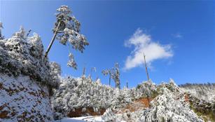 Schneelandschaft im Longcanggou Nationalen Waldpark