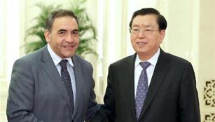 Zhang Dejiang trifft den Präsidenten der Abgeordnetenkammer von Chile