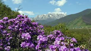 Sommerlandschaft der Qilian Berge
