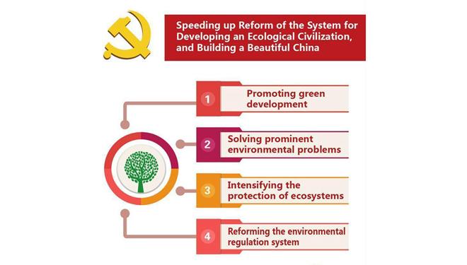 Infografiken: Xis Bericht an den 19. Parteitag der KPCh