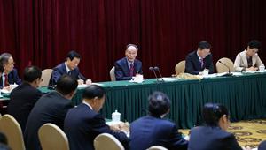 Wang Qishan nimmt an Podiumsdiskussion mit den Delegierten aus Hunan teil