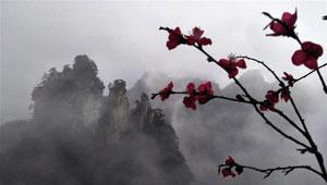 Tianzi-Gebirge in Wolken verhüllt