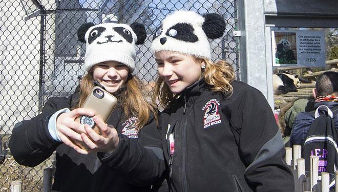 Abschiedsfeier für Riesenpandas im Toronto Zoo abgehalten