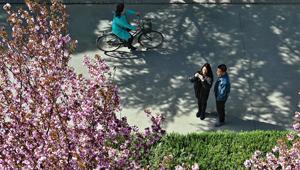 Frühlingsszenerie der Landwirtschaftlichen Universität Shanxi