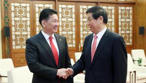 Li Zhanshu trifft mongolischen Premierminister in Beijing