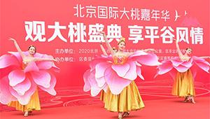 Pfirsichmesse im Bezirk Pinggu in Beijing abgehalten