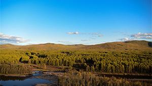 Herbstlandschaft des Nationalen Feuchtgebietsparks Genheyuan in Innerer Mongolei