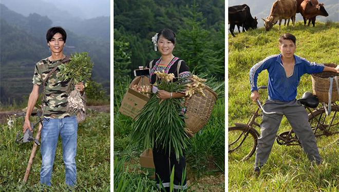 Soziales Netzwerk verändert Erntesaison der Bauern in Chinas Hunan