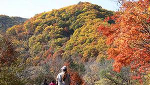 Herbstlandschaft in Hugou von Liaoning