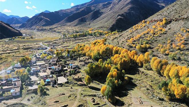 Herbstlandschaft in Doilungdeqen von Lhasa