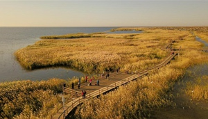 Landschaft am Juyanhai See in Innere Mongolei