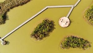 Nationales Naturschutzgebiet des Gelben Flusses in Shandong in Luftbildern