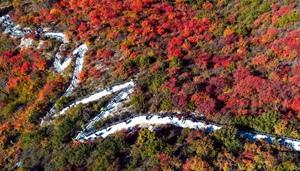 Landschaft des mit roten Blättern überlagerten Berges Taihang