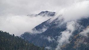 Landschaft in Lulang von Tibet
