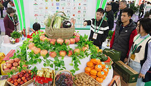 17. Internationale Landwirtschaftsmesse in China fand in Nanchang statt
