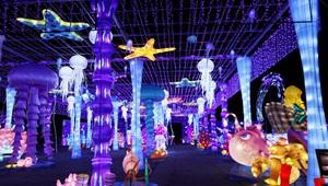 Jährliche Magische Winterlichtmesse in Texas abgehalten