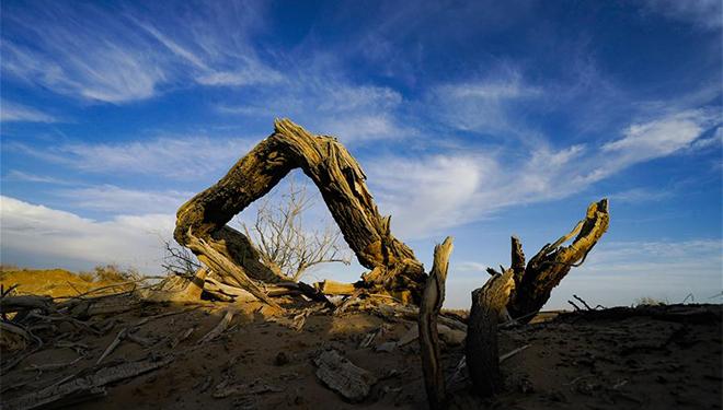 In Bildern: Keriya-Fluss in Xinjiang
