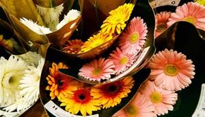 Mitarbeiter der Blumengroßhandelsmärkte in Chicago bereiten Blumen für den Valentinstag vor