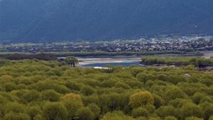 Frühlingslandschaft im nationalen Feuchtgebietspark Yani in Tibet