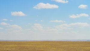 Weidelandschaft in Xilingol von Chinas Innere Mongolei