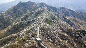 Frühlingslandschaft der Chinesischen Mauer Mutianyu in Beijing
