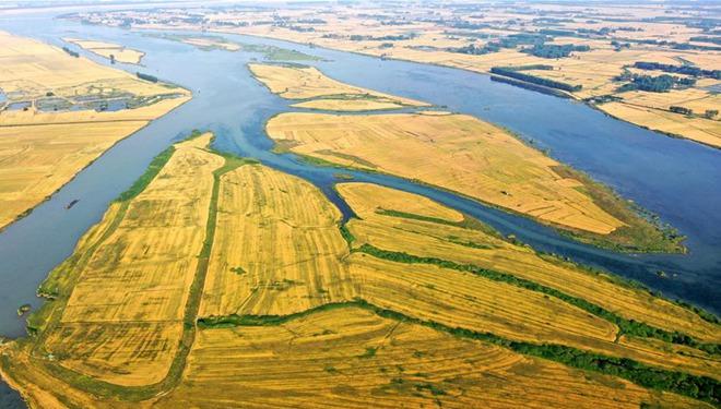 Luftaufnahmen der Weizenfelder in Jiangshu