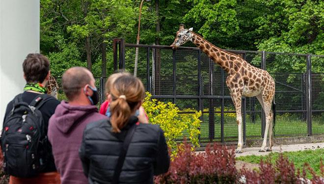 Warschau-Tiergarten für Gäste wiedereröffnet