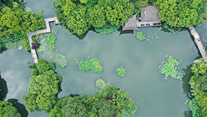 Landschaft des Westsees in Hangzhou