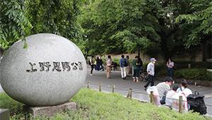 In Bildern: Erstes Wochenende in Japan seit vollständiger Aufhebung des Ausnahmezustands
