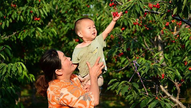 Besonderer Bauernhof-Aufenthalt fördert ländlichen Tourismus im Kreis Quzhou in Hebei
