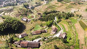 Landschaft der terrassierten Felder in Chinas Hunan