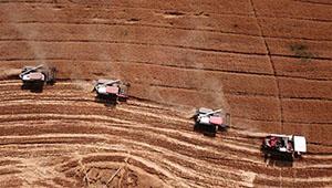 Mähdrescher ernten Weizen in Chinas Anhui