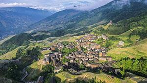 Ansicht der terrassenförmig angelegten Felder Longji in Chinas Guangxi