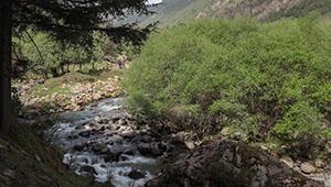 Landschaftsgebiet Binggouhe in Chinas Gansu