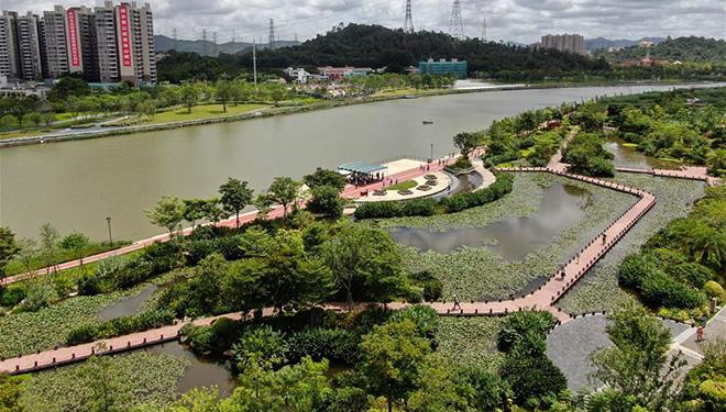 Umwelt verbessert sich nach der Behandlung des Flusses Maozhou in Shenzhen