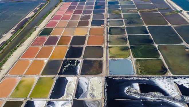 Flickenteppich aus Salzfeldern in Shandong