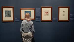 Museum der Schönen Künste in Budapest wiedereröffnet