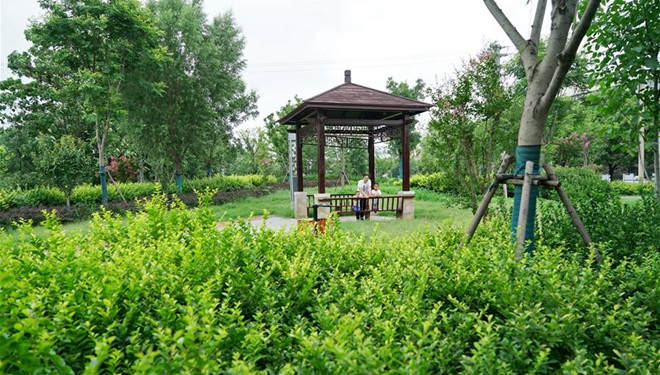 Stadt Shahe in Hebei treibt Bau von städtischen Grünflächen voran