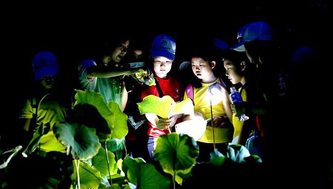 Nachttour zur Förderung des botanischen Wissens im Botanical Garden Shanghai-Chenshan organisiert