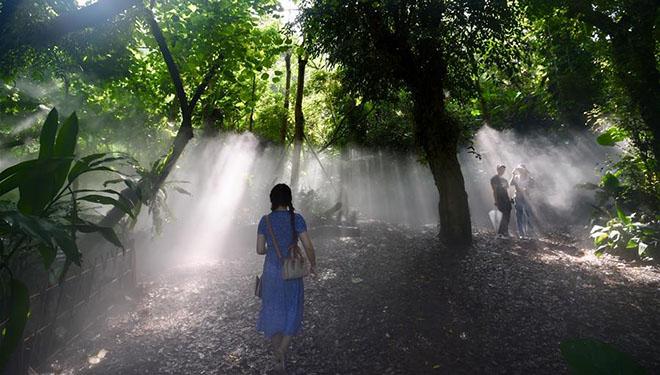 Botanischer Garten in Xiamen zieht viele Besucher an