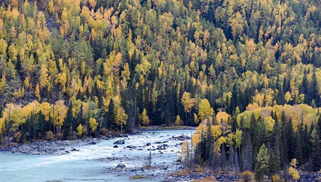 Anischt des Landschaftsgebiets Kanas von Altay in Chinas Xinjiang