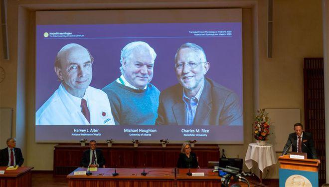 Träger des Nobelpreises für Physiologie oder Medizin 2020 verkündet