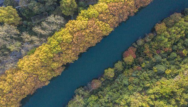In Bildern: Nationaler Städtischer Feuchtgebietspark Huaxi in Guiyang